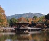 秋の奈良で紅葉を愛でる、のんびり旅
