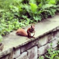 Das Foto wurde bei Viktoriapark von travelformotion am 5/18/2012 aufgenommen