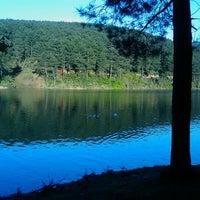 4/22/2012 tarihinde Hande E.ziyaretçi tarafından Aydos Ormanı Göl Kenarı'de çekilen fotoğraf