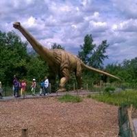 6/6/2012にCarrie M.がField Station: Dinosaursで撮った写真