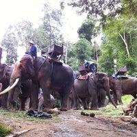 Foto scattata a Maesa Elephant Camp da Alice _. il 7/7/2012