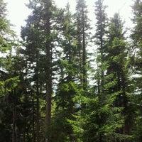 7/18/2012 tarihinde çiğdem Y.ziyaretçi tarafından Kümbet Yaylası'de çekilen fotoğraf