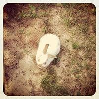 Foto tirada no(a) Alabama Gulf Coast Zoo por Danielle M. em 8/19/2012