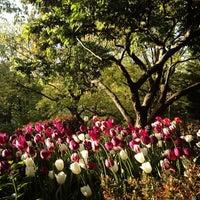 Foto scattata a Shakespeare Garden da rob z. il 5/5/2013