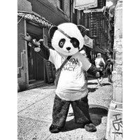 รูปภาพถ่ายที่ Panda Diplomacy โดย Robert S. เมื่อ 5/6/2013
