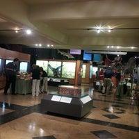 Das Foto wurde bei University of Michigan Museum of Natural History von Deborah E. am 5/22/2014 aufgenommen