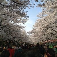 3/24/2013 tarihinde lee_kooziyaretçi tarafından Ueno Park'de çekilen fotoğraf