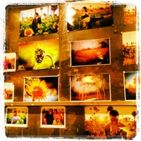Photo taken at Songbird Coffee & Tea House by Chad W. on 2/24/2013
