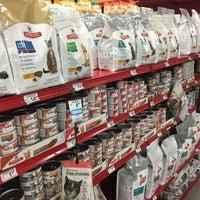Petco Pet Store In Toledo