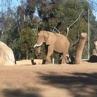 Das Foto wurde bei Elephant Odyssey von Joyous M. am 10/4/2012 aufgenommen