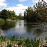 5/12/2013 tarihinde Richard B.ziyaretçi tarafından Royal Botanic Gardens'de çekilen fotoğraf