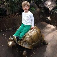 10/20/2013 tarihinde Morgan Z.ziyaretçi tarafından Minnesota Zoo'de çekilen fotoğraf
