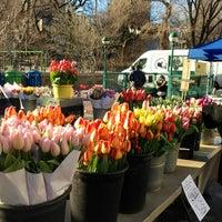 Снимок сделан в Union Square Greenmarket пользователем Mandy M. 3/29/2013