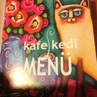 Photos At Kafe Kedi Café In Kocaeli