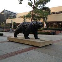 12/9/2012にRoxanne R.がUCLA Bruin Statueで撮った写真