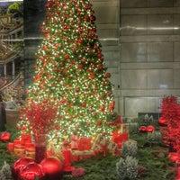 12/12/2015 tarihinde €li£ ..ziyaretçi tarafından Raffles Istanbul Zorlu Center'de çekilen fotoğraf