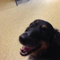 Foto tomada en Jacksonville Animal Hospital por Dianne H. el 4/14/2014