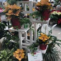 Homewood Nursery Garden Center 10809 Honeycutt Rd