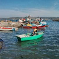 5/11/2013 tarihinde hasan ş.ziyaretçi tarafından Garipçe Aydın Balık'de çekilen fotoğraf