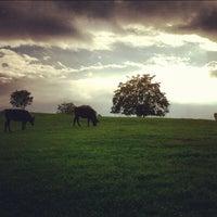 Снимок сделан в Parco Regionale dell'Appia Antica пользователем Paolo C. 10/9/2012