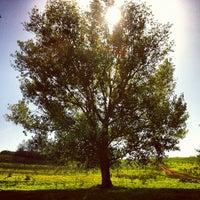 Снимок сделан в Parco Regionale dell'Appia Antica пользователем Paolo C. 10/20/2012
