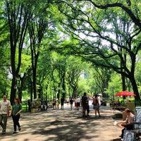 6/20/2013 tarihinde BADER C.ziyaretçi tarafından Central Park'de çekilen fotoğraf