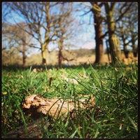4/20/2013에 Philip A.님이 Richmond Park에서 찍은 사진