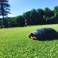 Снимок сделан в Wedgewood Pines Country Club пользователем Changing L. 6/18/2016