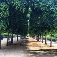 5/17/2013にMarie A.がJardin du Palais Royalで撮った写真