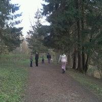 Foto tomada en Ватутинский лес por Tatiana O. el 10/14/2012