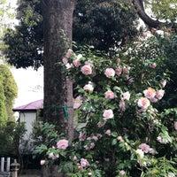 รูปภาพถ่ายที่ 弓弦羽の杜 โดย Hitoshi K. เมื่อ 4/7/2018