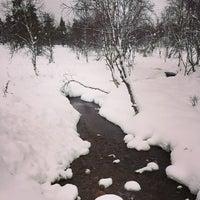 12/14/2014にAlex Z.がKakslauttanen Arctic Resortで撮った写真