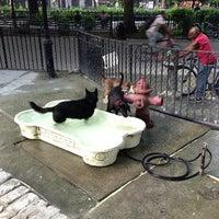 7/18/2013 tarihinde Peter K.ziyaretçi tarafından Tompkins Square Park Dog Run'de çekilen fotoğraf