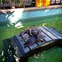 Foto tomada en Hyatt Centric Key West Resort & Spa por Zhongchao L. el 12/4/2014