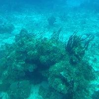 Foto tomada en Atlantis Submarine por Paola . el 5/31/2013
