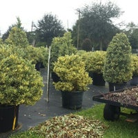 Photo Taken At Pells Citrus And Nursery By Karina G On 10 4