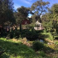 Photo taken at Myrtle Creek Botanical Gardens & Nursery by Kim D. on 2/9/2017