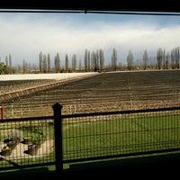 Foto diambil di Dominio del Plata Winery oleh ANi L. pada 8/31/2016