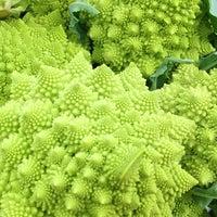 Photo prise au Portland Farmer's Market at PSU par Christopher S. le11/10/2012