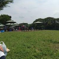 茅ヶ崎 里山 公園 バーベキュー