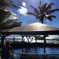 Photo prise au Maui Ocean Center, The Hawaiian Aquarium par Chris N. le1/6/2013