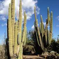 Photo prise au Desert Botanical Garden par Joe Y. le12/19/2012