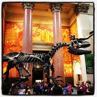 Foto scattata a American Museum of Natural History da Tim W. il 5/18/2013