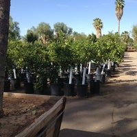 Photo taken at Whitfill Nursery by Liberty T. on 10/21/2012