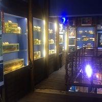 1/7/2018 tarihinde Füsunziyaretçi tarafından Deniz Biyolojisi Müzesi'de çekilen fotoğraf