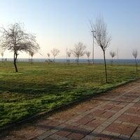 3/2/2013 tarihinde Okşan Ş.ziyaretçi tarafından Dalyan Sahil'de çekilen fotoğraf