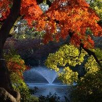 12/1/2012にYoko S.が井の頭恩賜公園で撮った写真