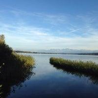 9/22/2013にPeter Z.がNaturschutzgebiet Unterer Greifenseeで撮った写真