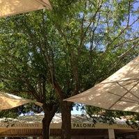 Terraza Restaurante La Paloma Ahora Cerrado Ciudad
