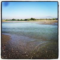Photo prise au Playa del parque natural de la desembocadura del Guadalhorce par Alejandro D. le7/13/2013